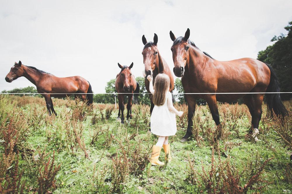 Family photography Ireland