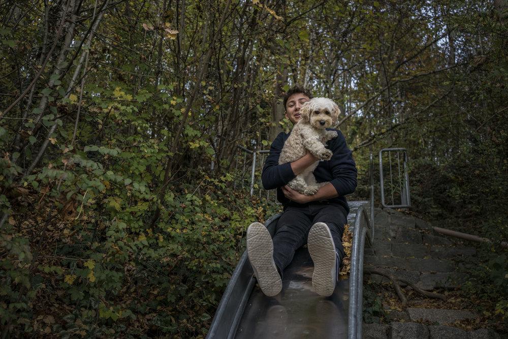 Bild aus einer Familienreportage mit größeren Kindern mit Junge und Hund, die gemeinsam rutschen