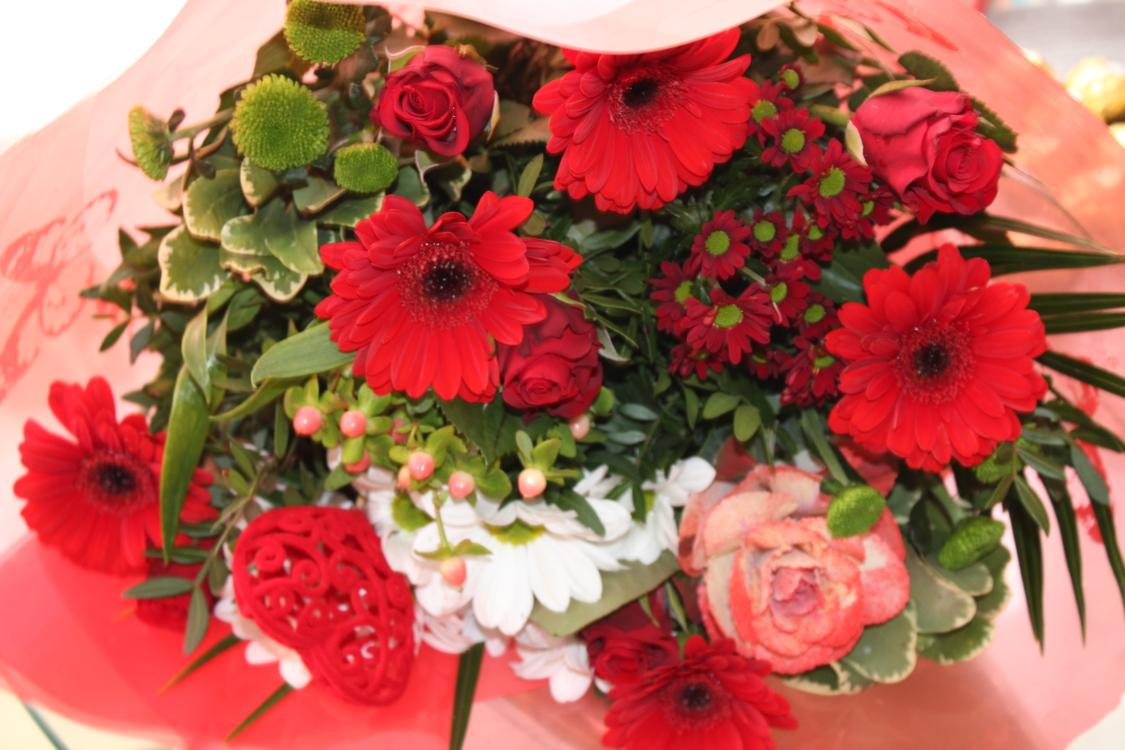 Gabriella chose my valentines flowers!