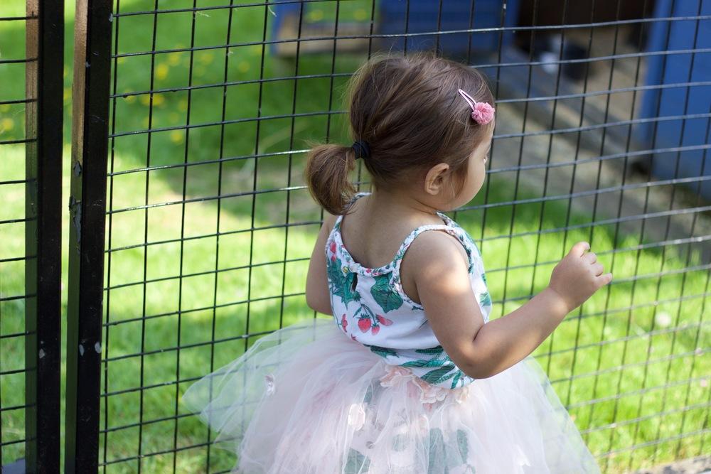 battersea park zoo london