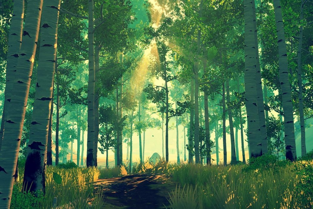 Firewatch's forests are some of the best looking environments you'll see in games.
