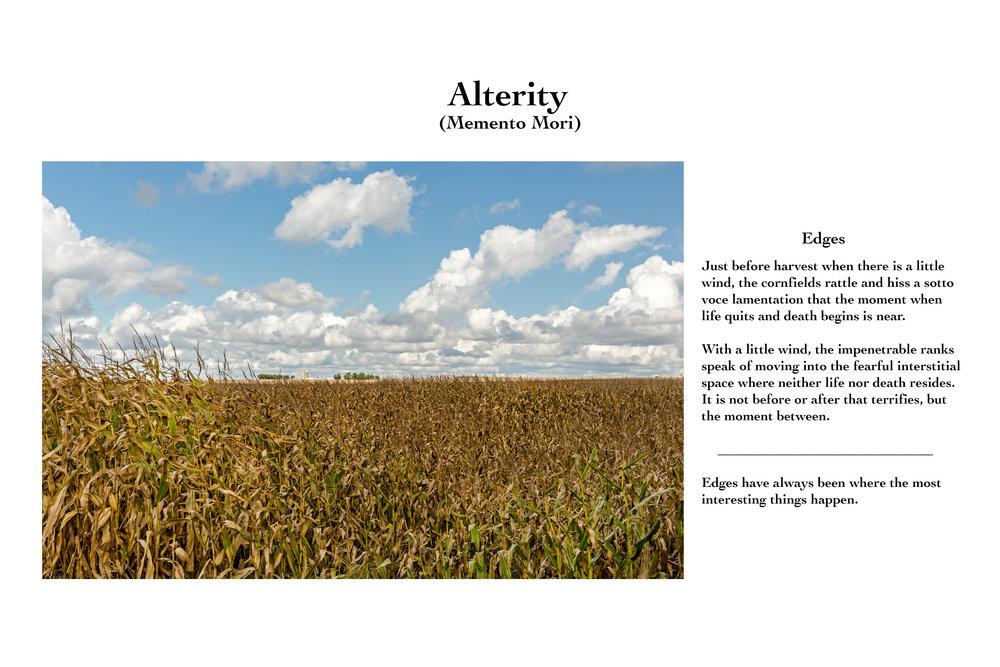 Alterity X.jpg
