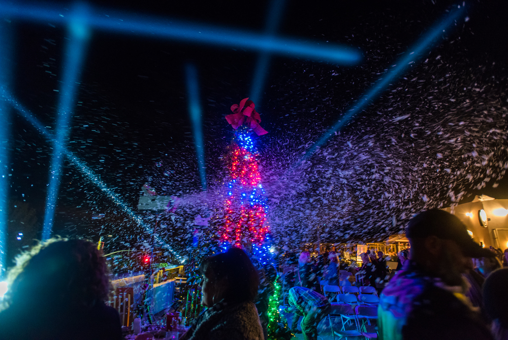 Digital Tree, Snow and Beam FX