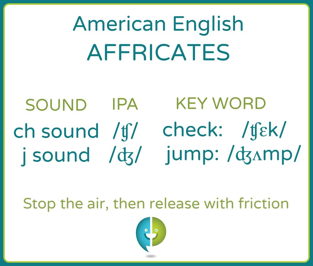 The English affricates, the  'ch sound' /ʧ/ and 'j sound' /ʤ/ are two-part consonant sounds. They begin by fully stopping the air from leaving the vocal tract, then releasing it through a constricted opening.
