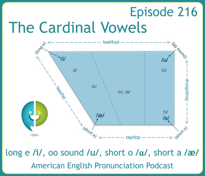 Cardinal vowels are the 4 vowel sounds that are the most extreme and can be used as preference points for the other vowel sounds.