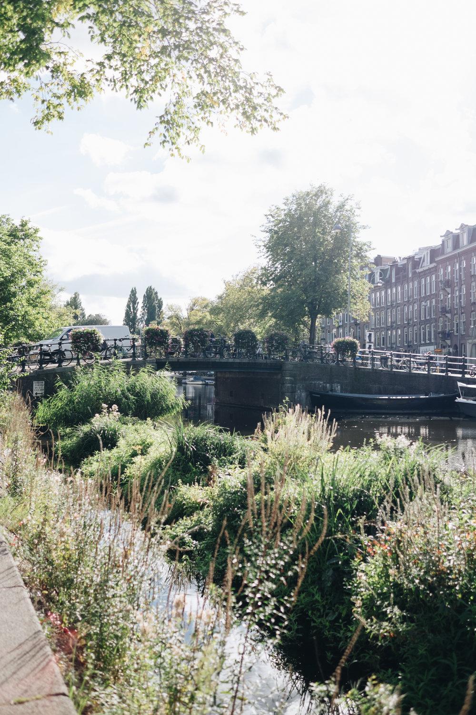 amsterdam-139.jpg