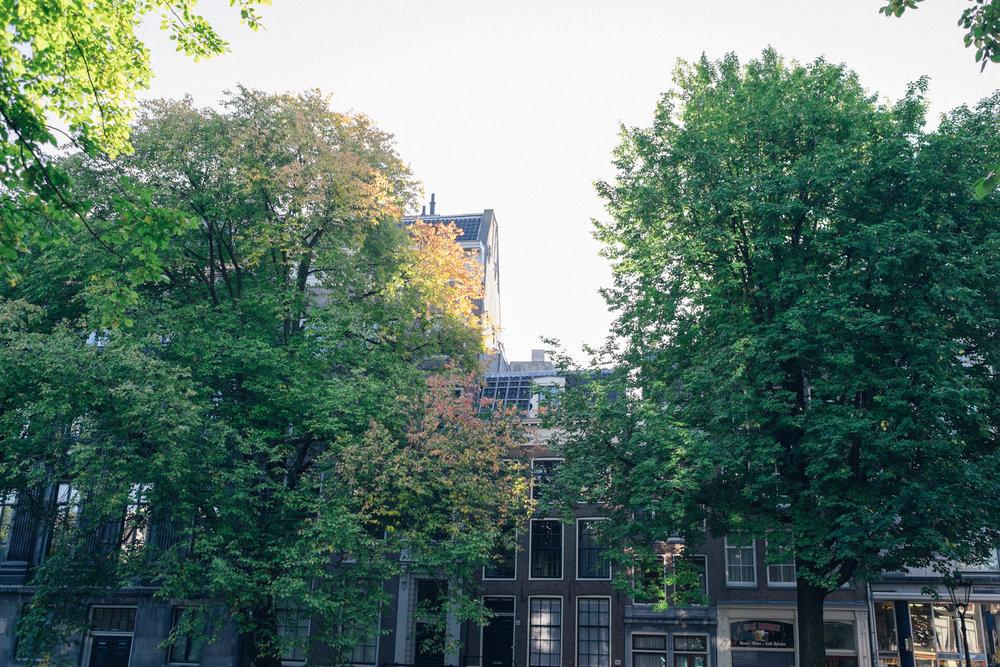 amsterdam-49.jpg