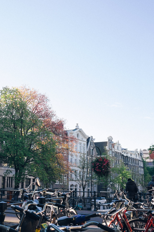 amsterdam-47.jpg