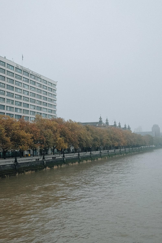 LondonFog-32.jpg