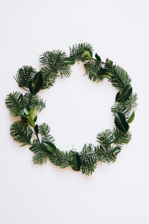 Evergreen-1.jpg