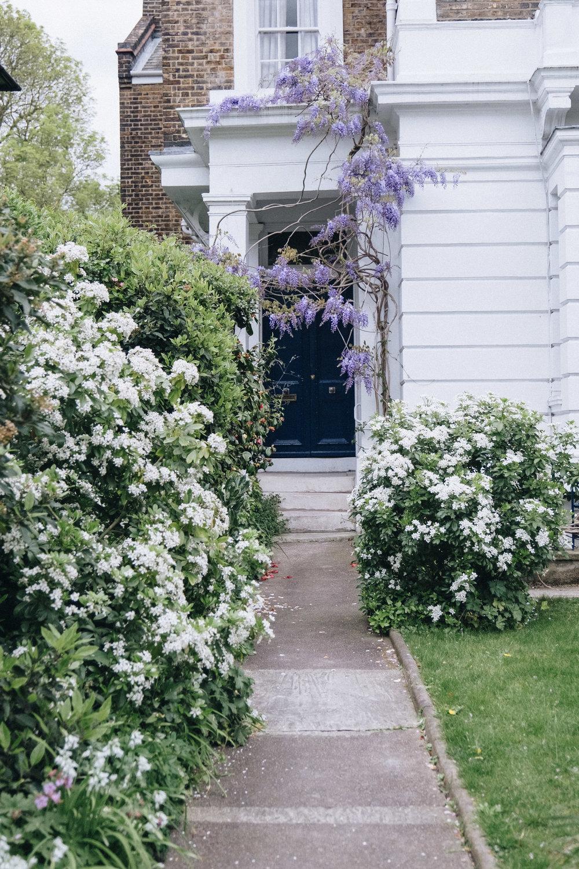 Blossom-198.jpg