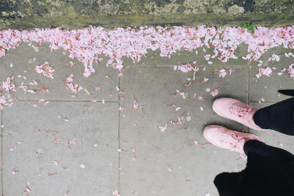Blossom-97.jpg