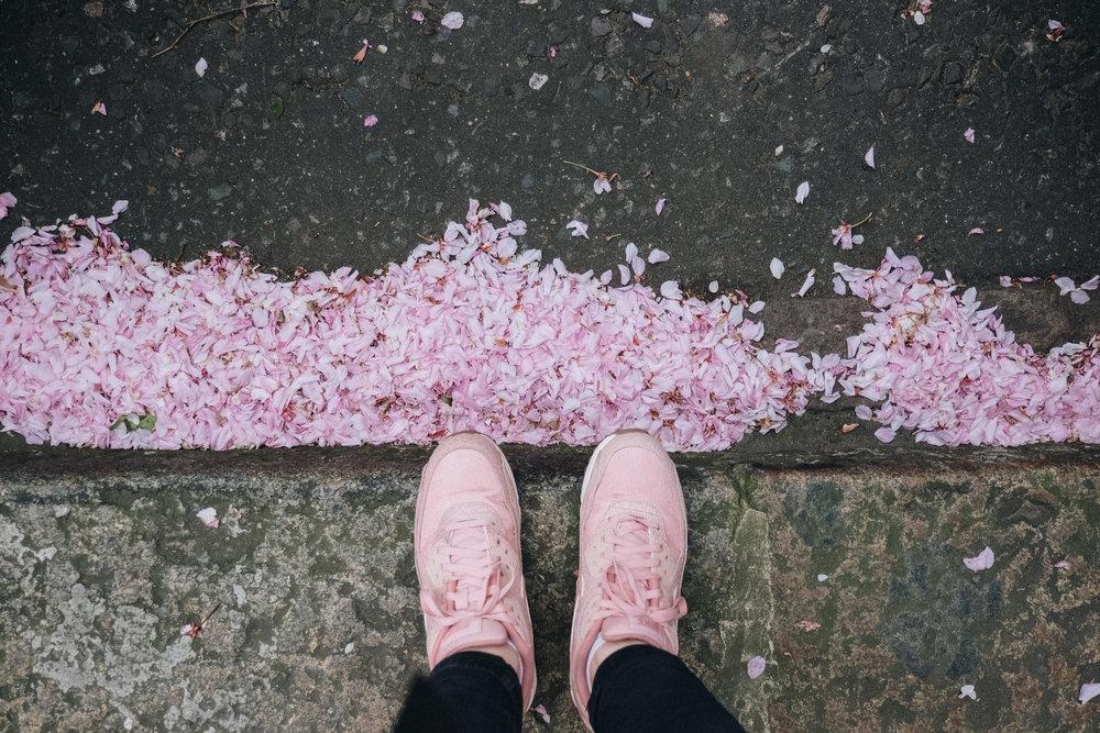 Blossom-108.jpg