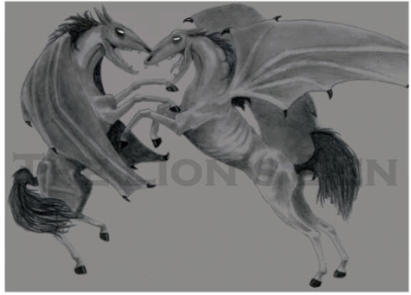 Thestral Fight