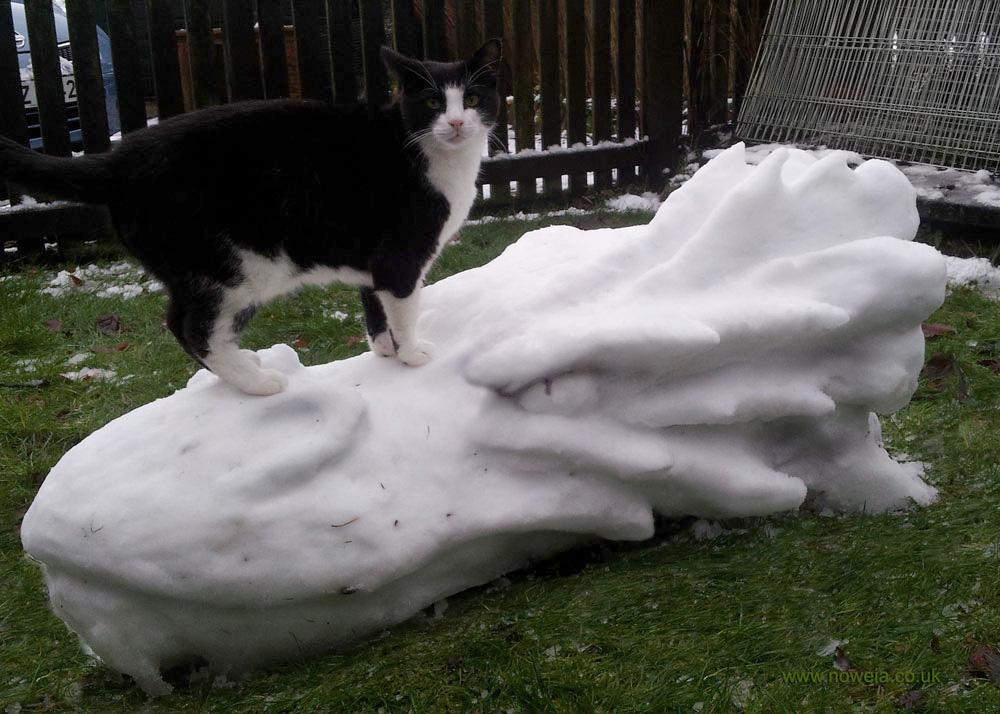 Snow Smaug (Snaug?)