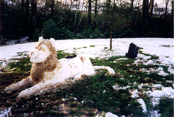 snowlion2.jpg