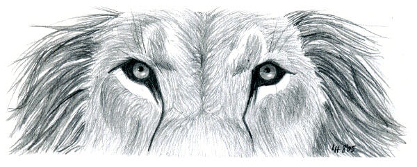 37) Eyes