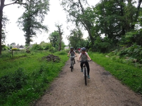 New Forest Biking Wet And High Adventures