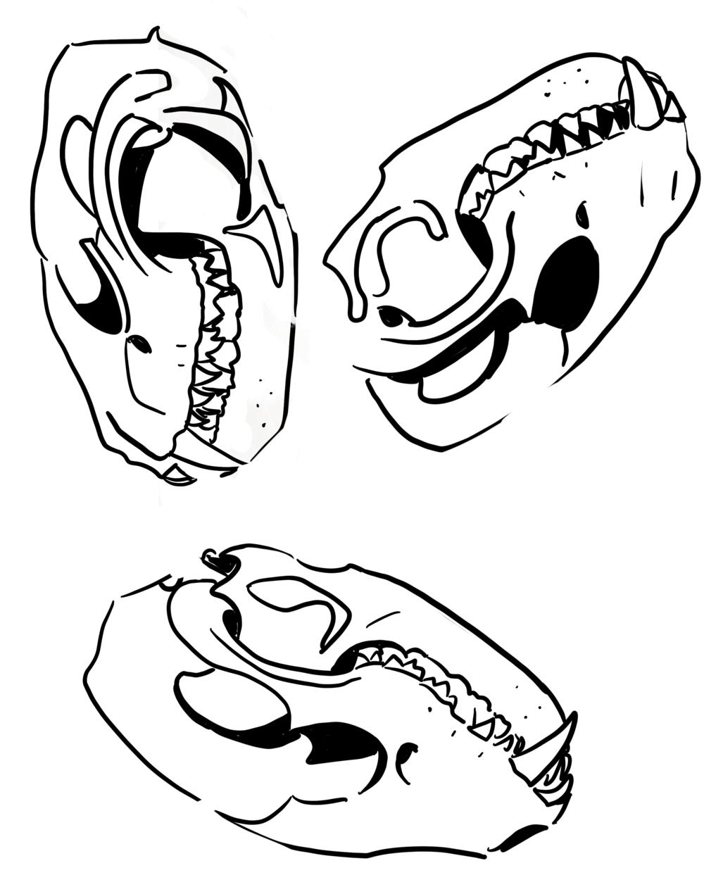 tilted_sun_becky_jewell_hart_skulls.png