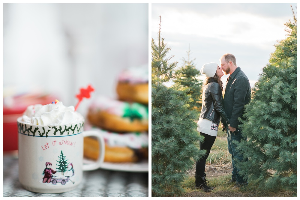 Pennsylvania Engagements | Bath, PA, Unangst Tree Farms | Real weddings, engagements and inspiration for the modern PA Bride | www.redoakweddings.com