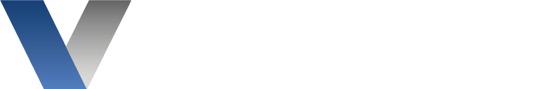 Vision Security Services