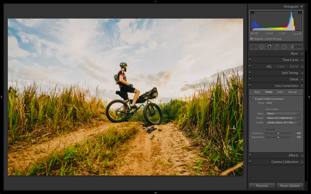 Different lenses need more or less correction, but the included profiles do a great job at fixing distortion