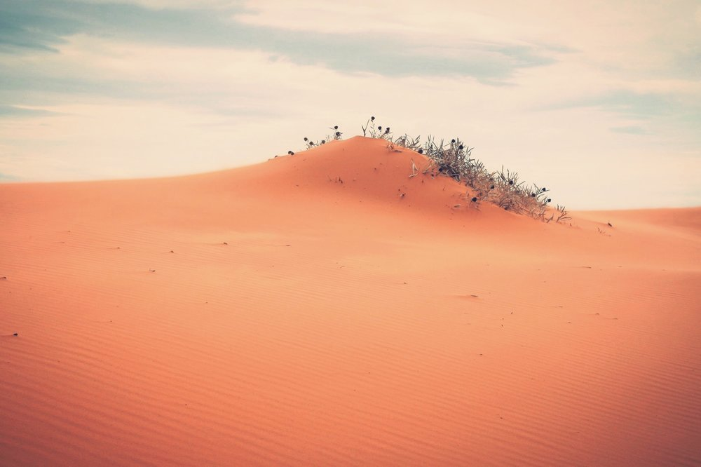 CoralPink Sand Dunes- Utah