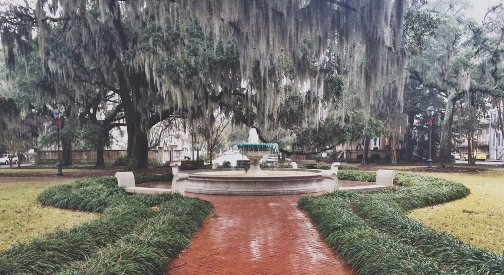 Savannah, you make me happy even when skies are gray.