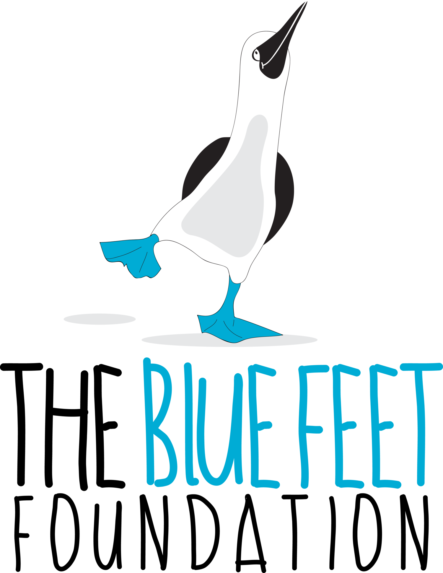 The Blue Feet Foundation