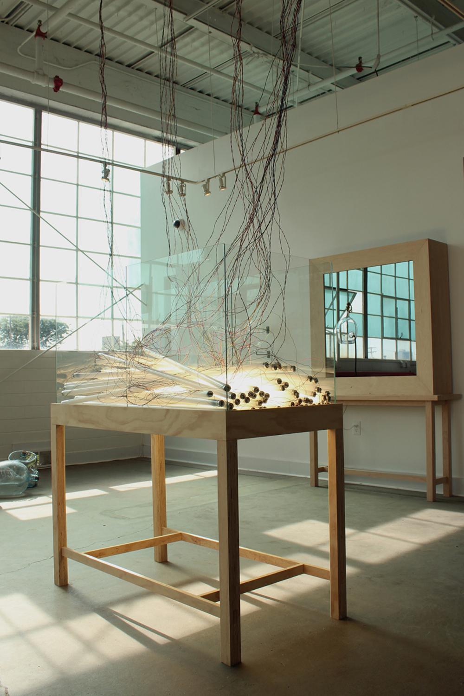 Still (installation view), 2013