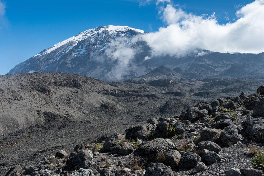 Mt. Kilimanjaro from Barafu Camp, 15,331'. (photo:David Kotz)