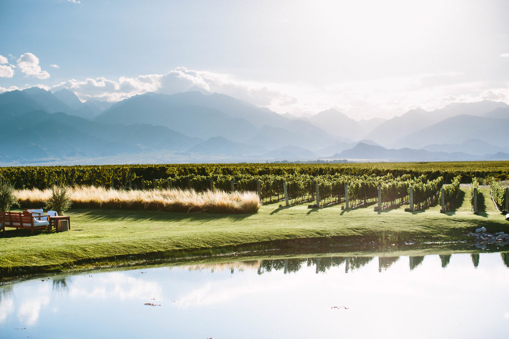 The Vines Resort and Spa; Mendoza, Argentina