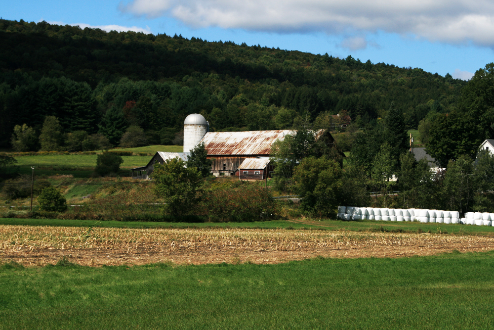 Barn in the Mad River Valley