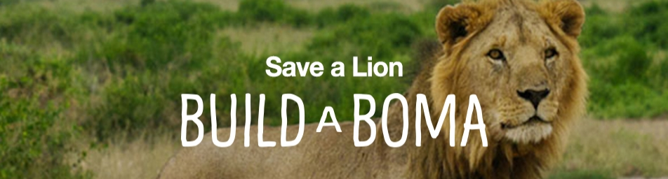 "Build a Boma is a campaign from National Geographic's Big Cats Initiative that is saving lions and other big cats. Every dollar raised will go directly toward building and maintaining livestock enclosures called ""bomas"" in Kenya and Tanzania. Protecting livestock from predation helps protect big cats from retaliatory killings. Bomas are a simple solution for a big problem. Even a small contribution can make a big difference."