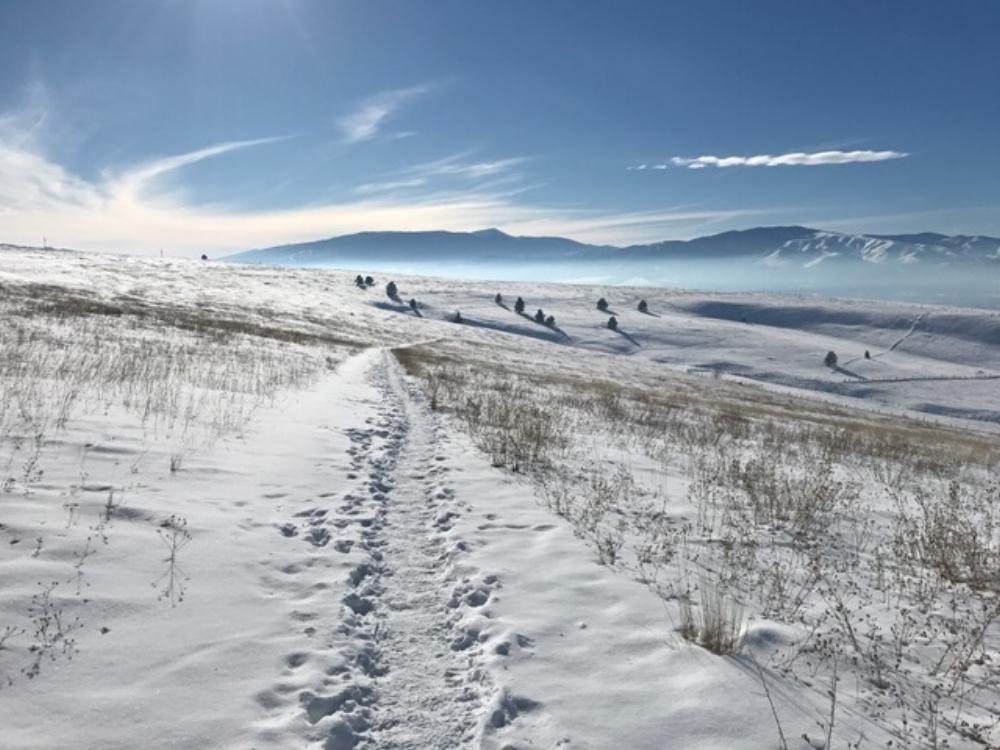 Waterworks Hill; Montana, USA