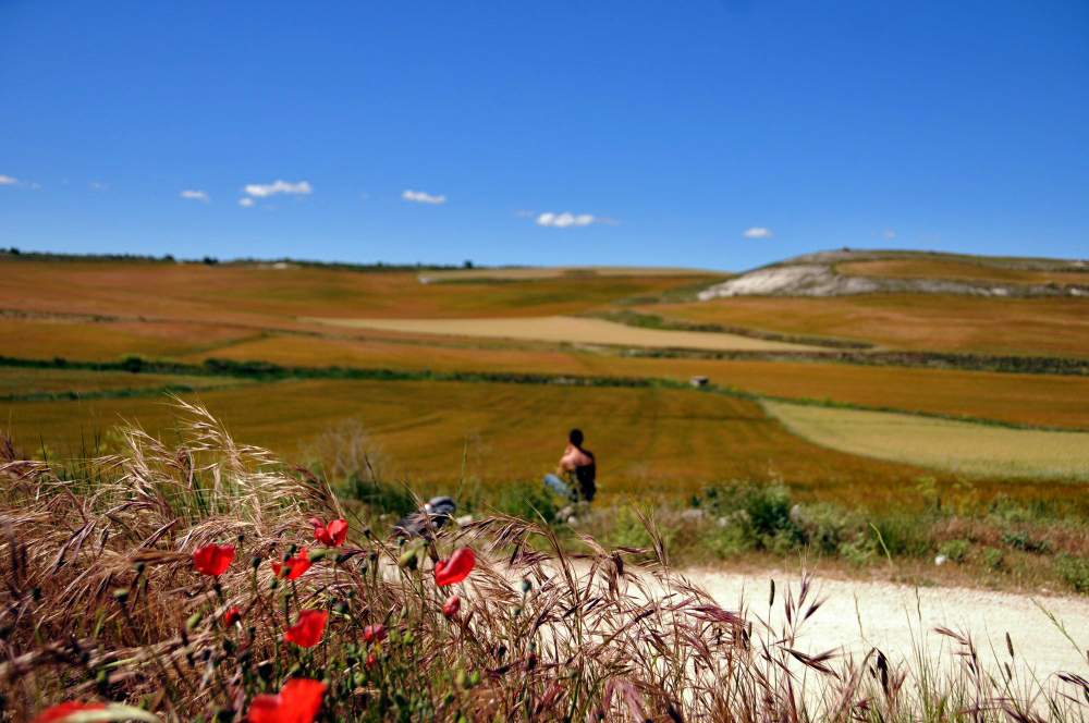 A peregrino, pilgrim, takes a break in the Castilla y Leon countryside along the Camino de Santiago.