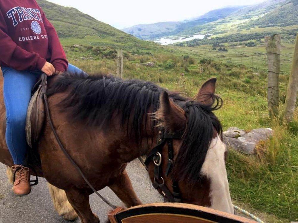 Kerry_Ireland_Horseback_JasmineCaceres.jpg