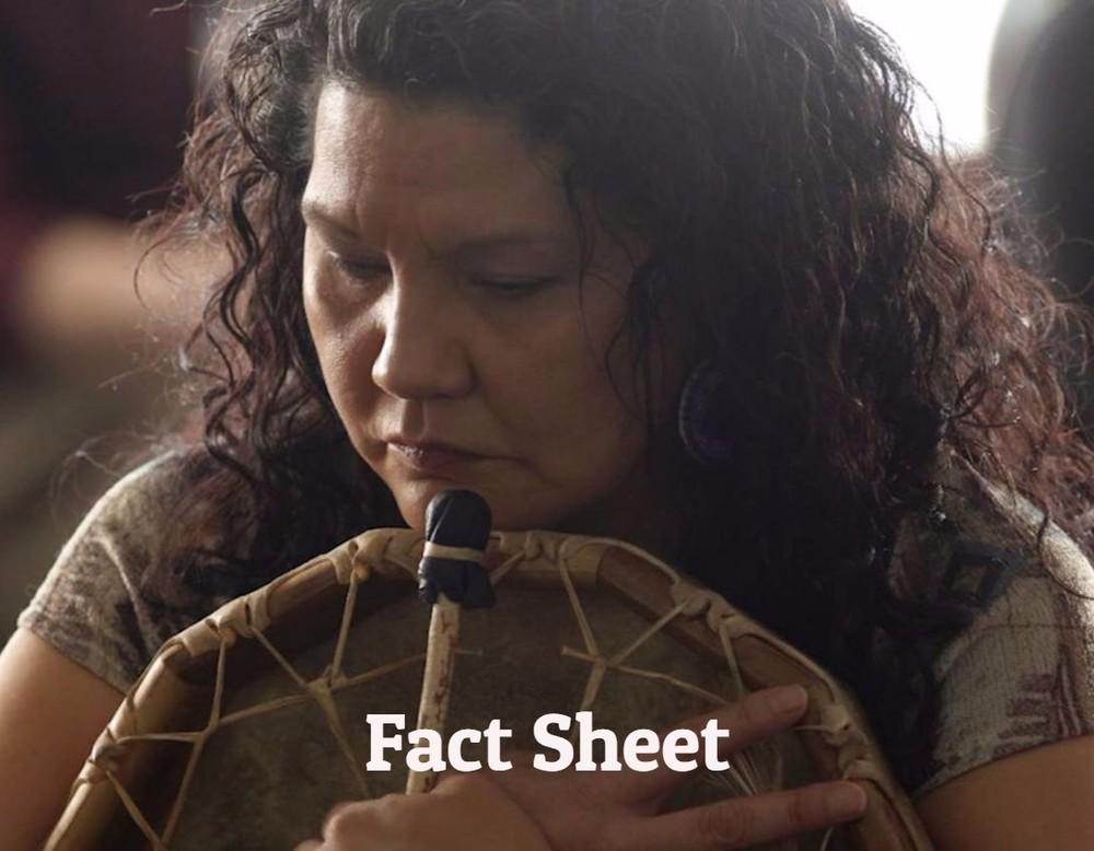 NWAC Fact Sheet
