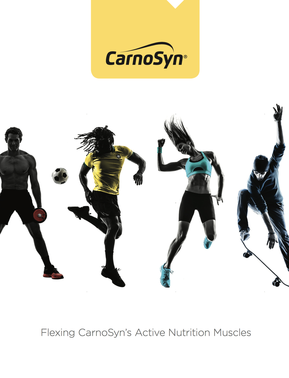 CarnoSyn   CarnoSyn revised their brand positioning to encompass the emerging Active Nutrition category. Sharon Benedict worked with Jeff Hilton and other BrandHive staff to develop a new Brand Communication Platform (BCP) to support this shift. Sharon wrote the Brand Positioning, Brand Promise, and Brand Story segments of the plan, in addition to SEO-optimized key messages for B2B and B2C audiences.