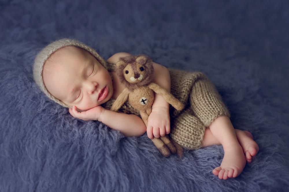 teddy newborn  (34).jpg