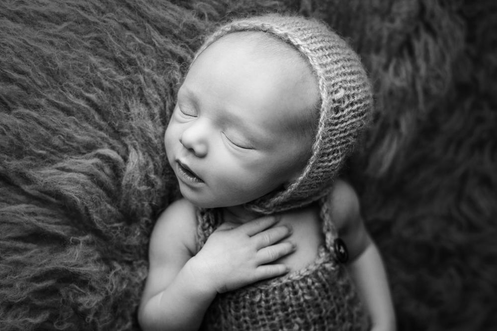 teddy newborn  (41).jpg