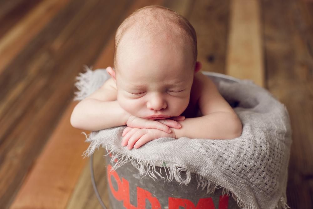 teddy newborn  (69).jpg