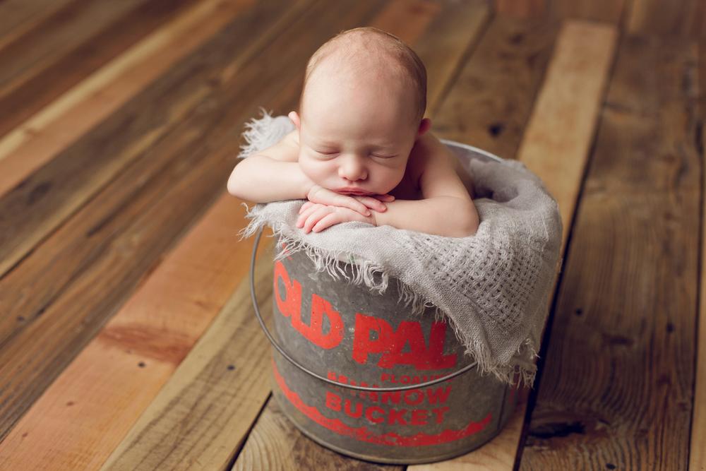 teddy newborn  (70).jpg