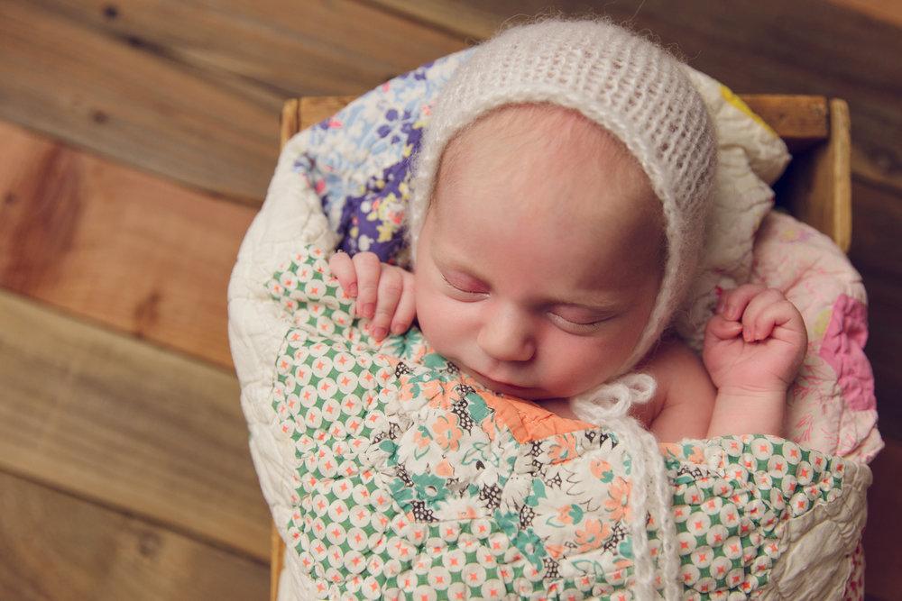 lily newborn -34.jpg