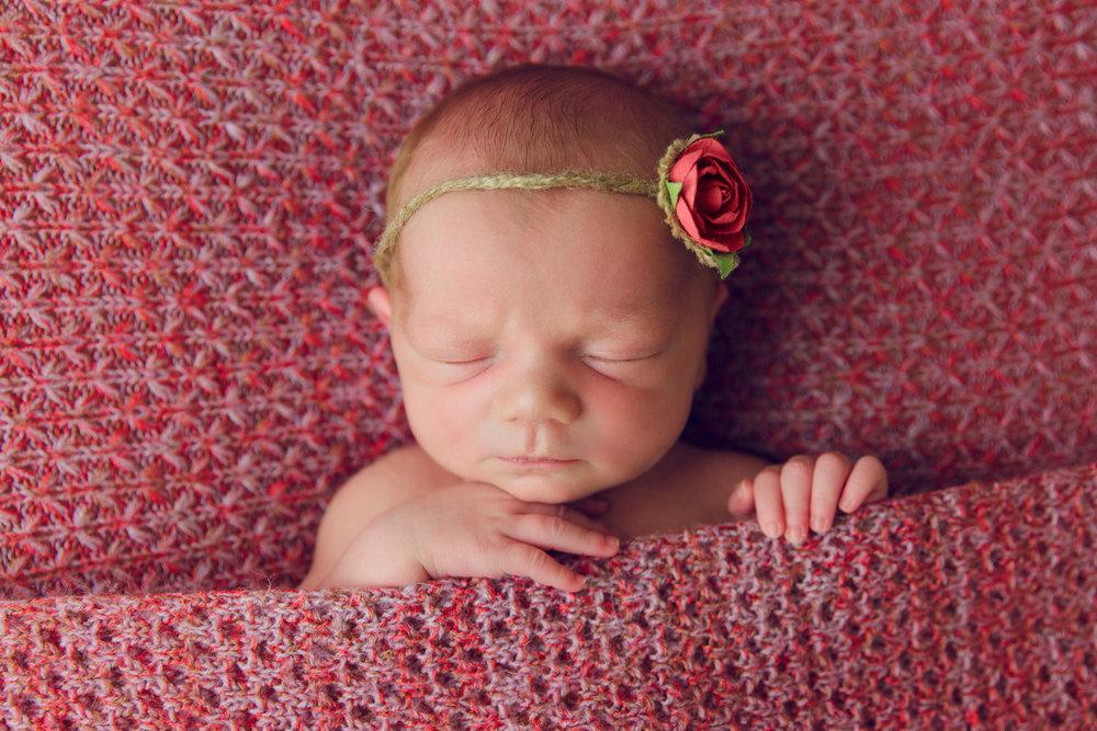 kolette newborn -36.jpg