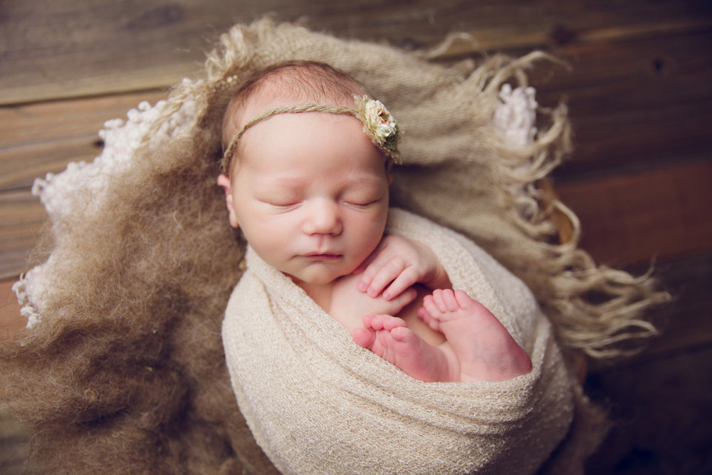 molly newborn photo  (64).jpg