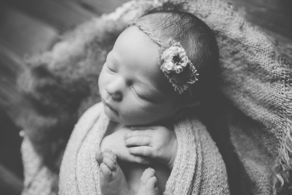 molly newborn photo  (69).jpg