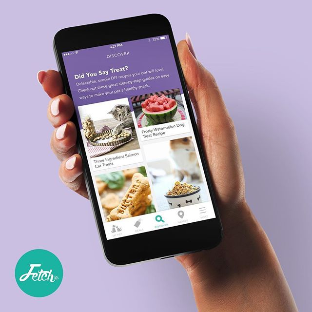 Fetch My Pet just got an exciting new feature - Discover! Be sure to download the latest app update to explore Discover which showcases daily curated content to spark your imagination on all things Pet.