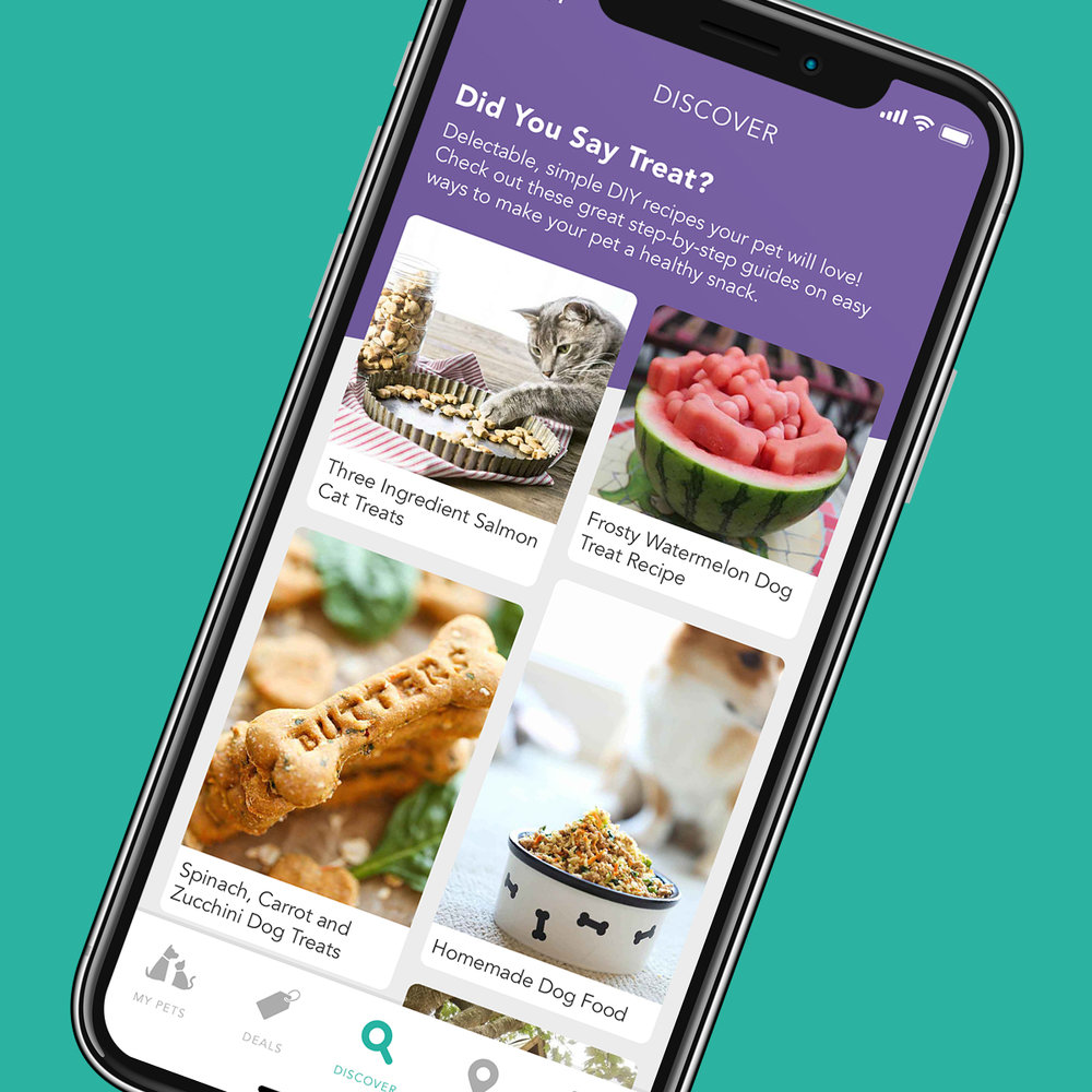 Introducing our newest feature: Discover - Explore new content curated daily to spark your imagination on all things pet.