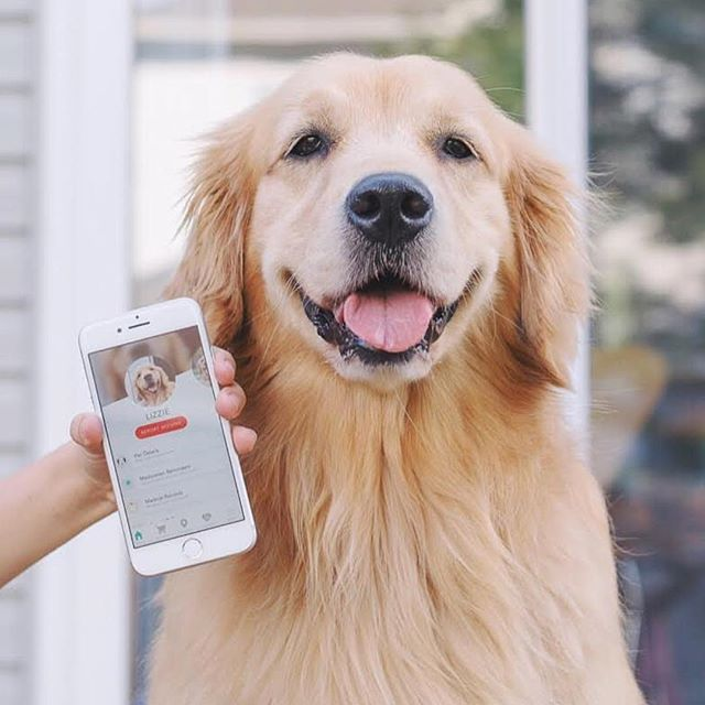 Want an easier way to manage your pet's life? Download Fetch My Pet for iPhone and see why pet parents across the country love the app that makes pet life management simple!